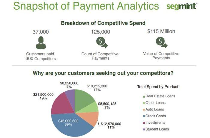 Segmint Sample Report Image